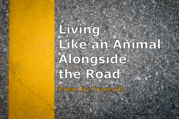 Living Like an Animal Alongside the Road